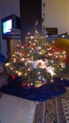 weihnachten 2255